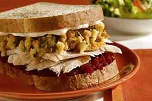 Leftover turkey ten low fat fabulous recipes 22moon com for Leftover shredded turkey sandwiches