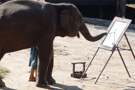 elephant-painting-2-741828