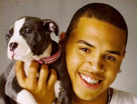 chris-brown_31