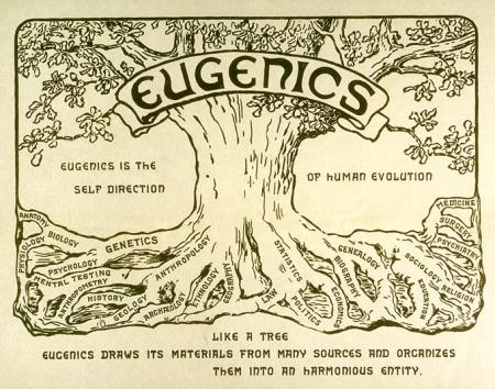 EugenicsTreeLogo