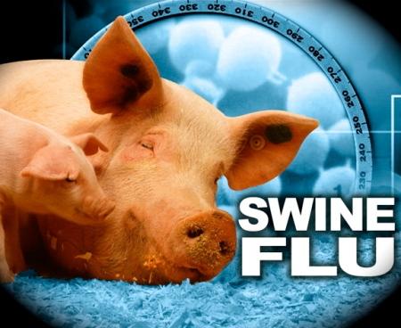 swine2009-04-27-1240873929