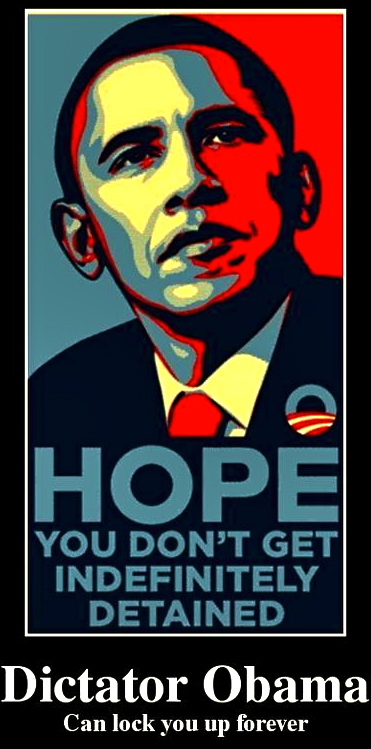 dictator-obama-can-lock-you-up-forever-d41d8c