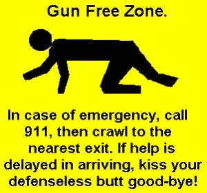 gun-control-300x279
