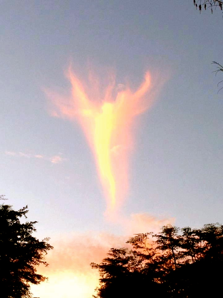 angel shaped cloud appears after new pope is announced