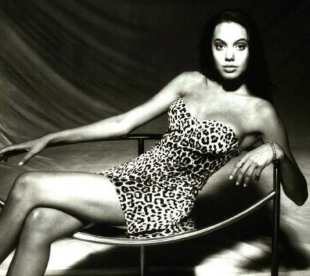 49482098.1110110407105_angelina_leopard_recl_05