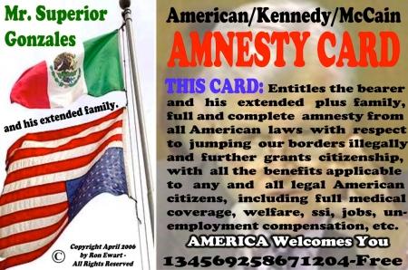amnestycard