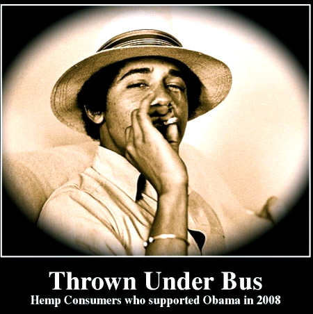 thrown-under-bus-hemp-consumers-who-supported-obama-in-2008-6da9a3