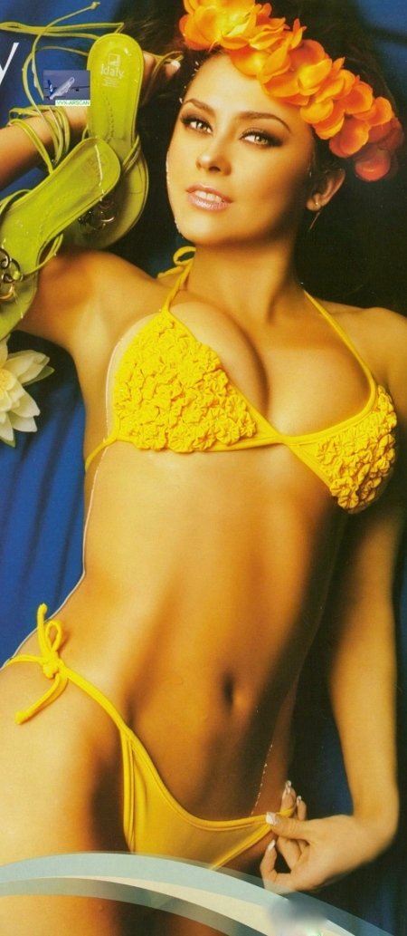 aracely-arambula-bikini-371986013