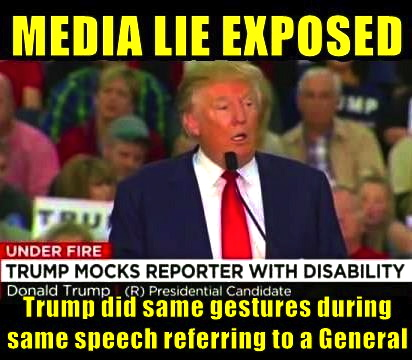 Image result for cartoons on trump mocking disabled
