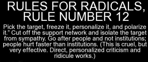 Image result for cartoons rules for radicals