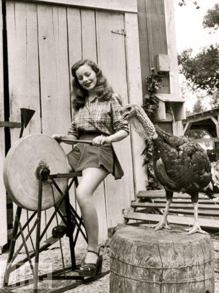 vintage-pinup-thanksgiving-turkey-ax-grindstone