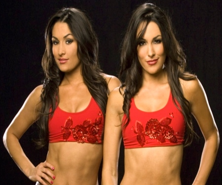 brie-bella-and-nikki-bella-and-brie-bella-890296297