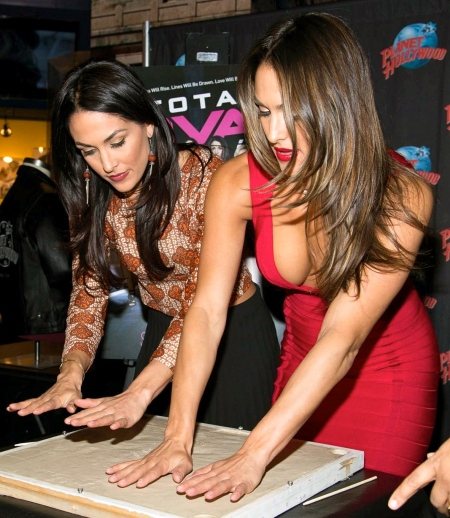 brie-bella-nikki-bella-hot-429874475