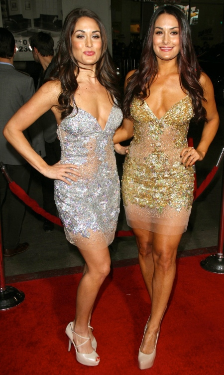 brie-nikki-bella-this-means-war-la-premiere-vettrinet-598981547