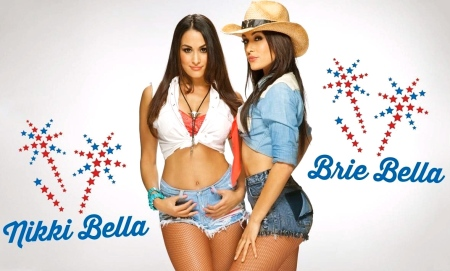 nikki-bella-and-brie-bella-and-brie-bella-803580062